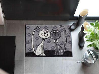 Dörrmatta katter