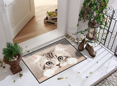 Dörrmatta kattmotiv